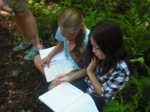 Campers explore the farm's Nature Trail and record their findings in journals