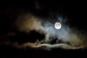 Full moon trail walk! @ Massaro Farm | Woodbridge | Connecticut | United States