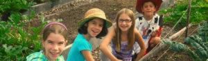 Summer camp at Massaro Farm