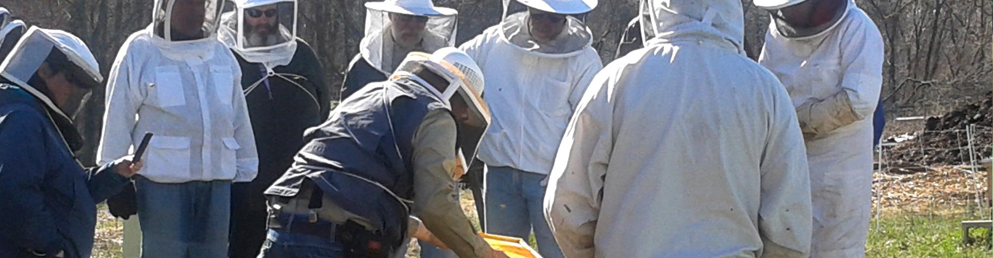 Bee Keeping workshops at Massaro Farms