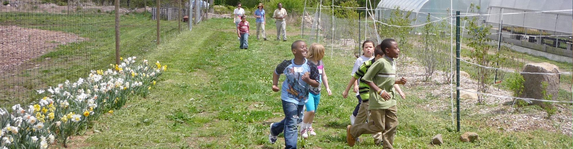 Educational field trip at Massaro Farm