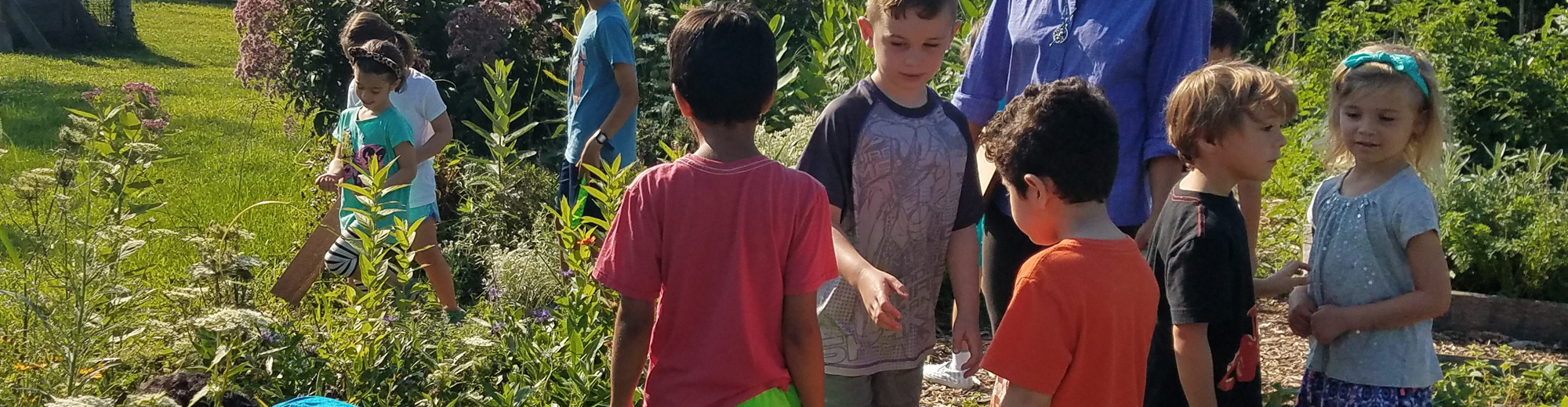 Massaro Summer camp