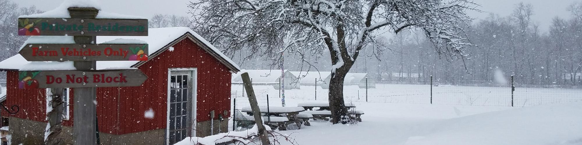 Winterfestcover